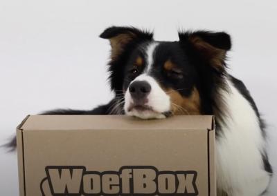 Renske dierenvoeding: Woefbox