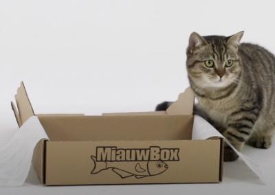 Renske dierenvoeding: Miauwbox